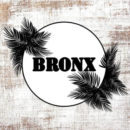 BRONX-NINOVE-1.jpg